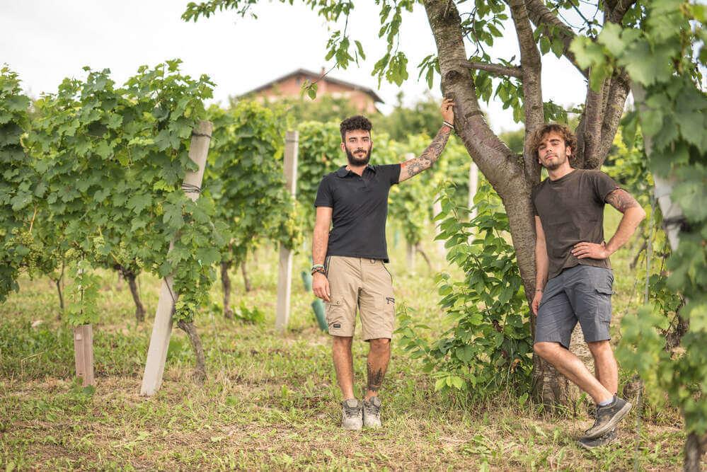 Bongioanni wine