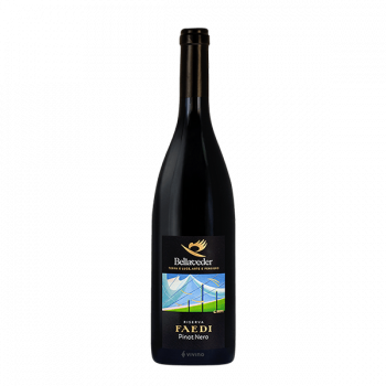 """Trentino Pinot Nero """"Faedi"""" Riserva 2017 - Bellaveder"""